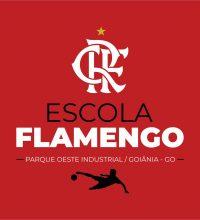 Logo Flamengo Parque Oeste